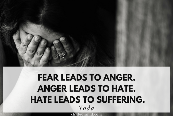 Fear leads to anger. Anger leads to hate. Hate leads to suffering. - Yoda Quote