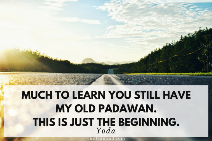 Much to learn you still have my old padawan. This is just the beginning. -Yoda